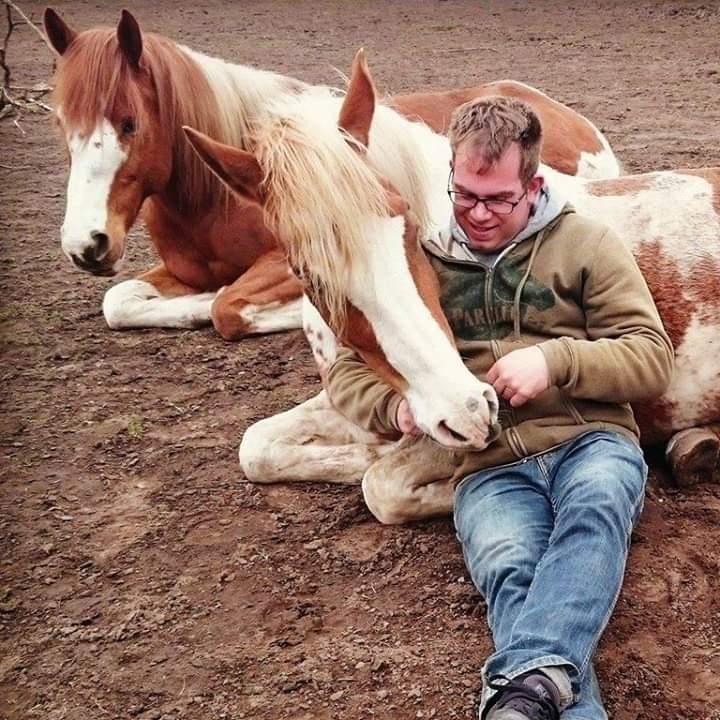 Bob Wenstedt schriktraining equiday paarden vuur rook show