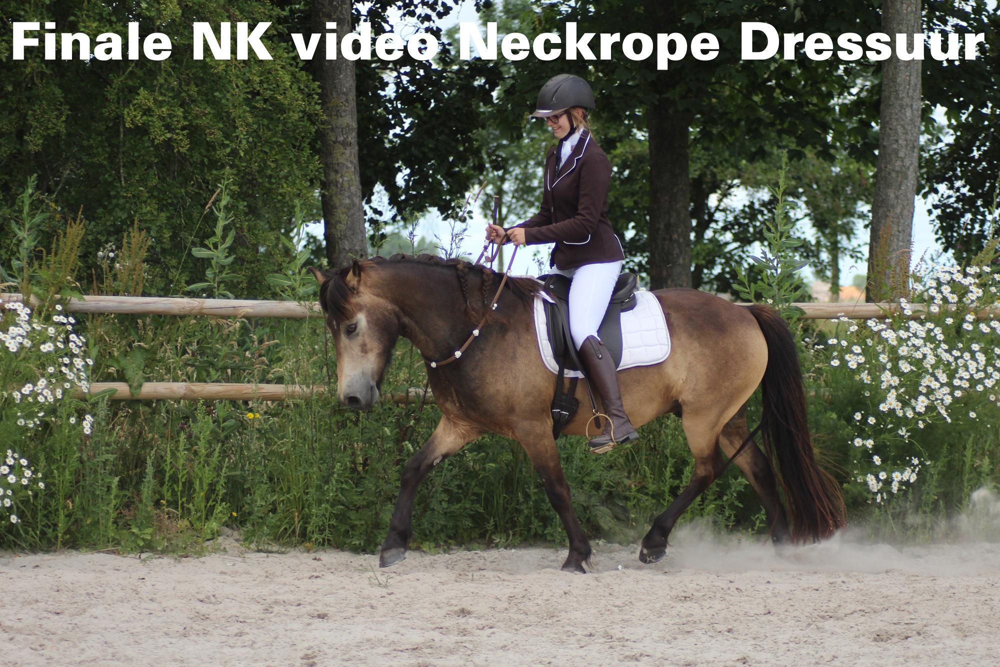 NK Neckrope